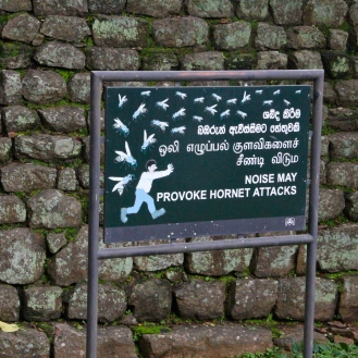 Wasp warning at Sigiriya, Sri Lanka