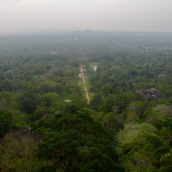 View of Sigiriya gardens from the top