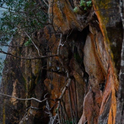 Cliff hangers at Sigiriya, Sri Lanka