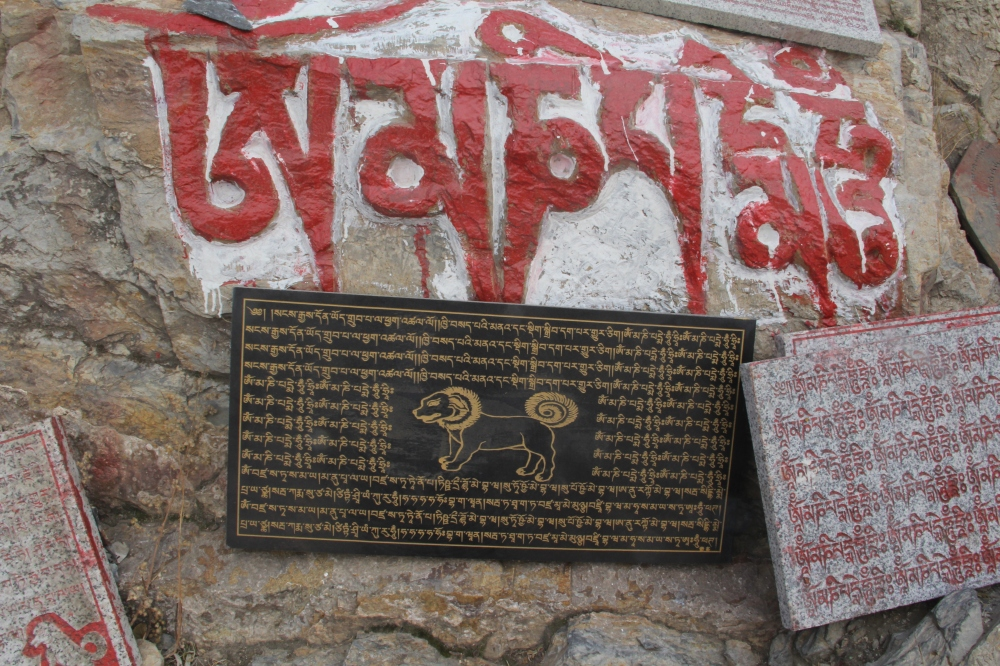 thousandbuddhas288